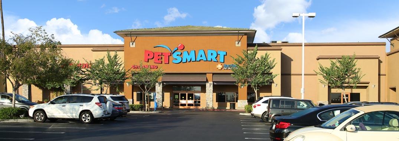 PetSmart - storyboard